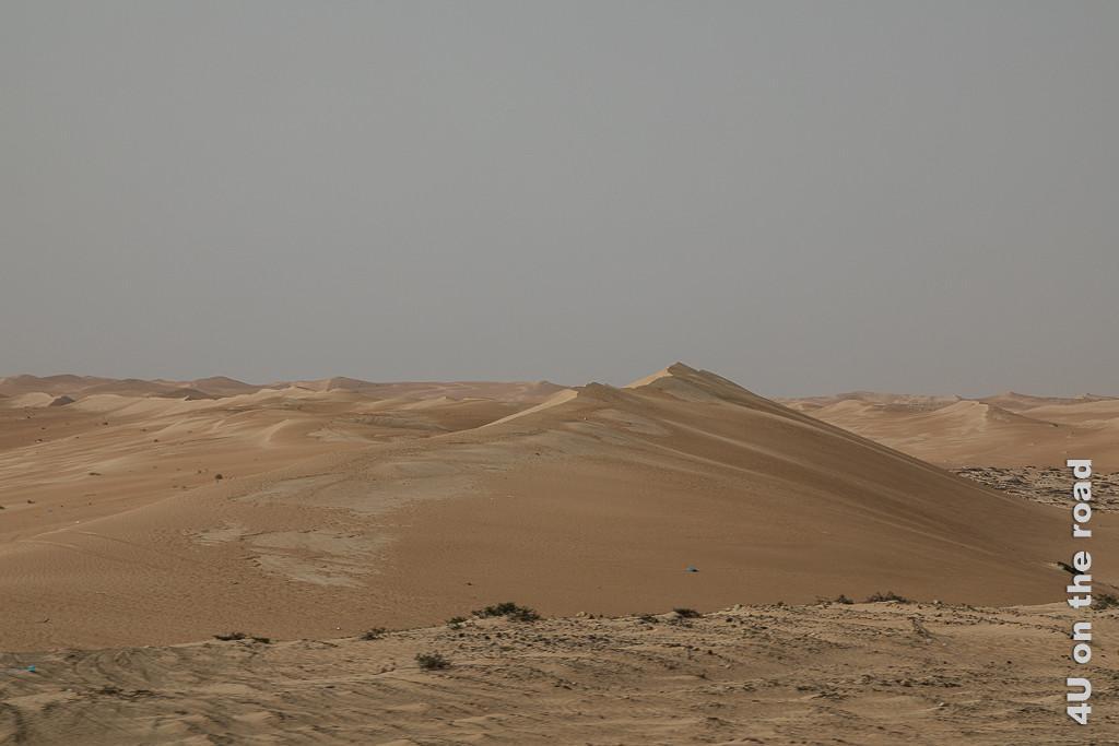 Die Strasse führt durch die schönste Dünenlandschaft. Bild zeigt die Kämme vieler Dünen.