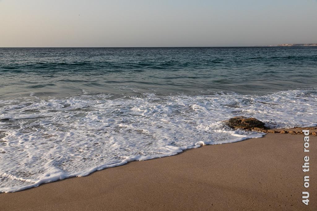 Ras al Jinz - mit der nächsten Welle ist die Schildkröte verschwunden. Bild zeigt die Schildkröte vom Meerwasser umspült.