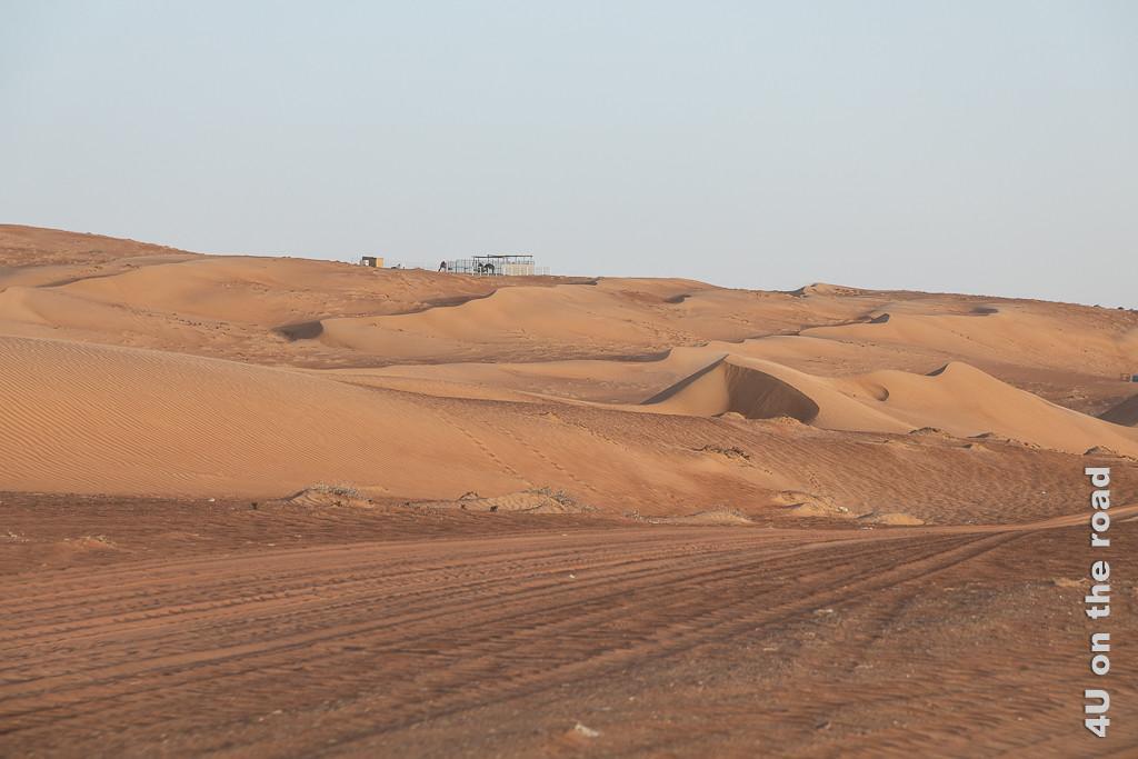 Auf dem Weg ins Wüstencamp in der Wahiba auf der Sandpiste. Links neben dem Weg erheben sich die Dünen.