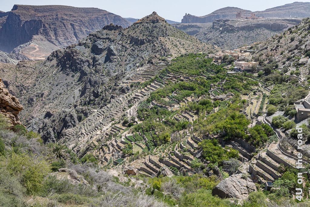 Blick von Al Ayn auf die Terrassen, denen der Jebel Al Akhdar seinen Beinamen - grüner Berg - verdankt