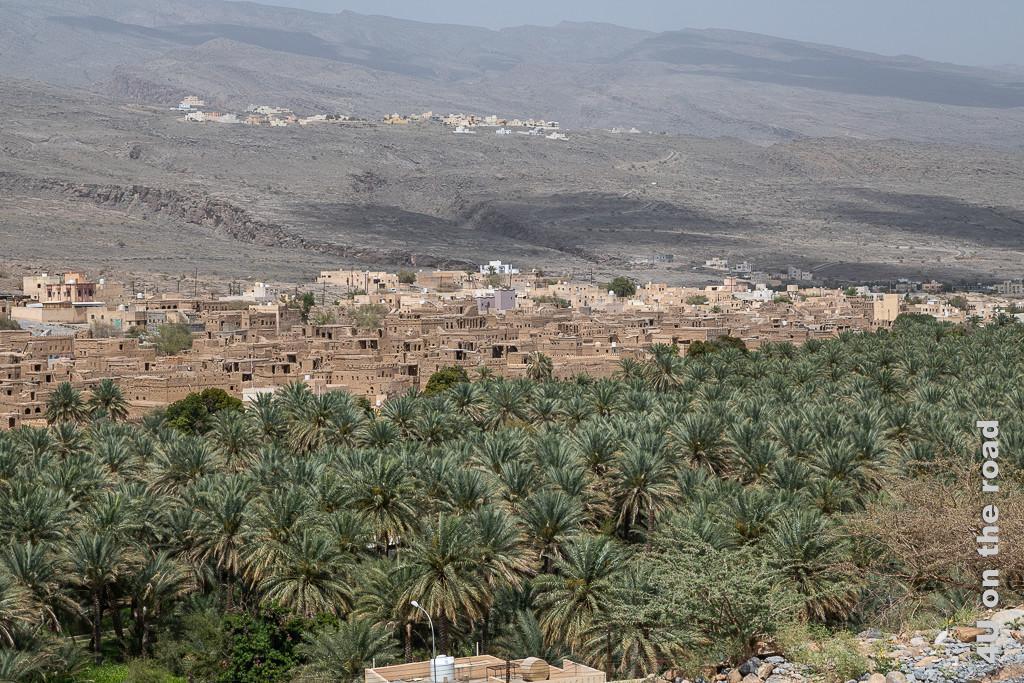 Rückblick aus der Ferne auf das Lehmhausviertel von Al Hamra und die Palmengärten