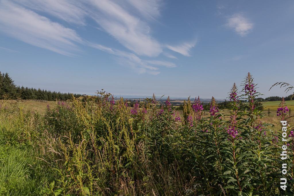 Schottische Landschaft südlich von Edinburgh auf dem Weg zur Melrose Abbey