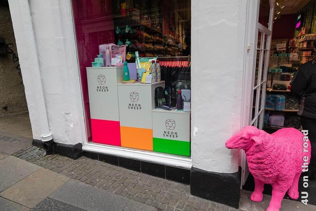 Edinburgh - Royal Mile - The neon sheep shop lockt mit einem pinkfarbenen Schaf die Kundschaft in den Laden