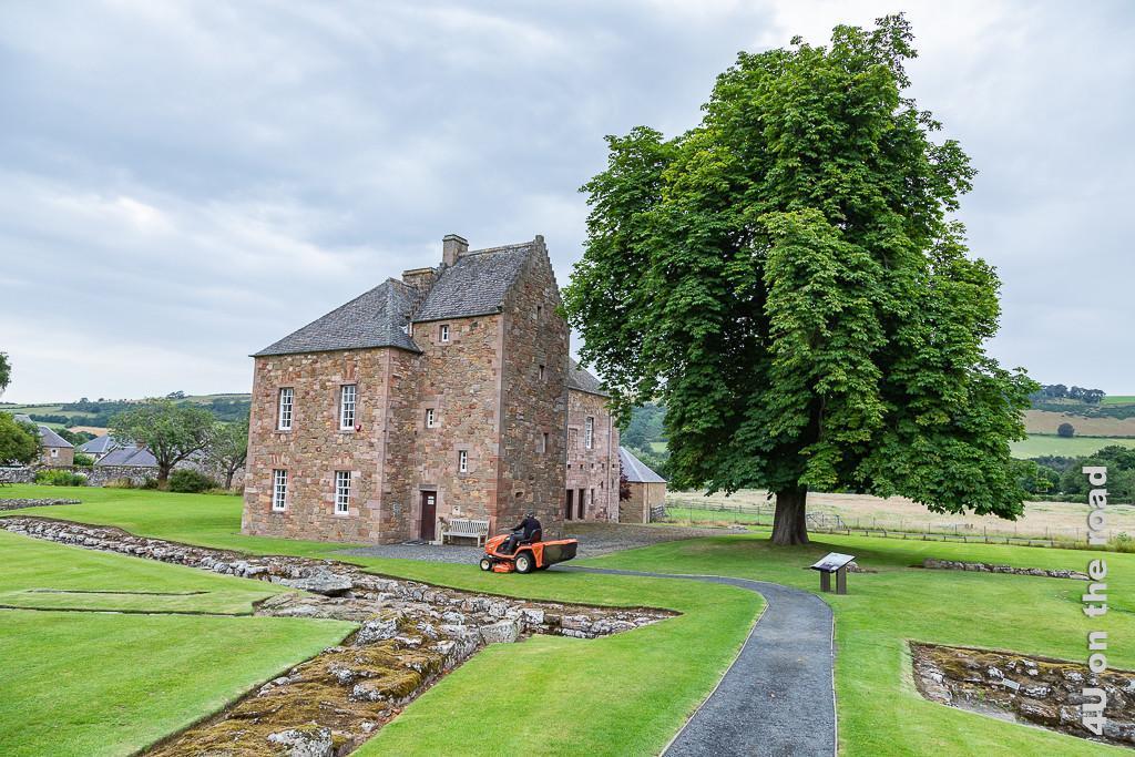 Melrose Abbey - Museum des Kloster Melrose. Das renovierte Haus steht neben einer grossen Kastanie. Gepflegte Rasenflächen rahmen Mauergrundrisse im Boden ein. Ein oranger Rasenmäher ist in Aktion.