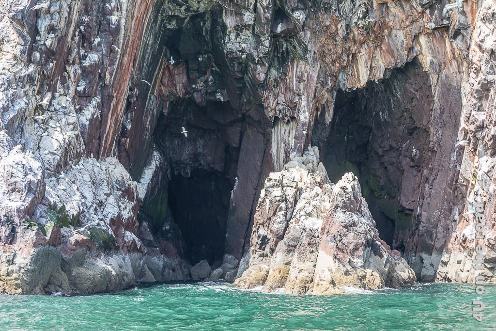 Höhle im Bass Rock. Man sieht sehr schön die Gesteinsschichtung