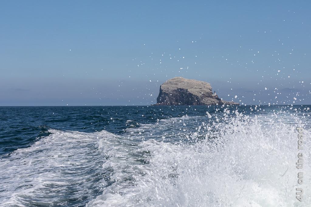 Bye bye Bass Rock. Das Schiff entfernt sich vom Felsen und spritzt Gischt auf