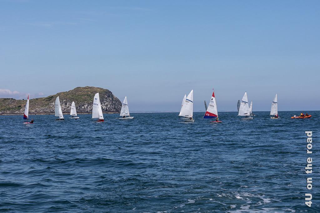 Diese Segelregatta versperrt die Hafeneinfahrt in den North Berwick Hafen. Im Bild sieht man 13 kleine Segelschiffe und ein Schlauchboot.