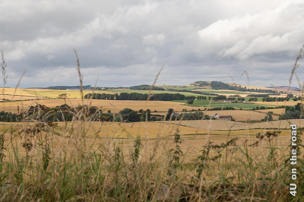Landschaft auf dem Weg zum Secret Bunker. Im Bild eine hügelige Landschaft mit überwiegend gelben Getreidefeldern, unterbrochen von Baumstreifen und ein paar Weideflächen.