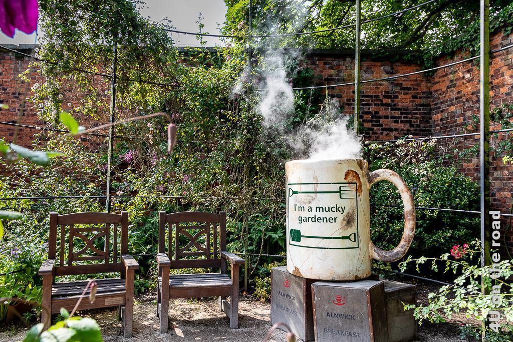 Alnwick Gardens, Formaler Garten - Picknickecke mit der dampfenden Tasse des schmutzigen Gärtners (so sieht die Tasse auch aus).