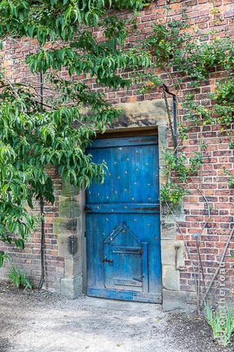 Alnwick Gardens Tor in der Mauer des Formalen Gartens - Das Tor ist Himmelblau mit goldenen Sternen. In der eigentlichen Tür befindet sich noch eine Minitür.