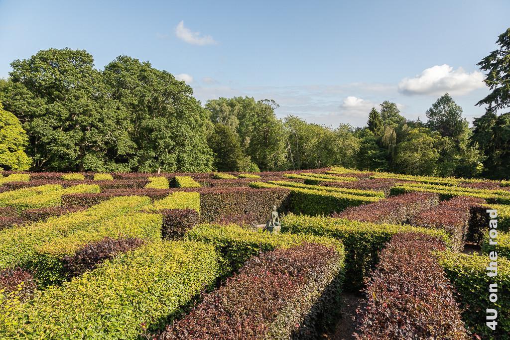 Labyrinth im Park von Scone Palace mit Skulptur in der Mitte und einem Zacken vom Stern. Sehr schön sieht man das Muster der roten und grünen Buchenhecken