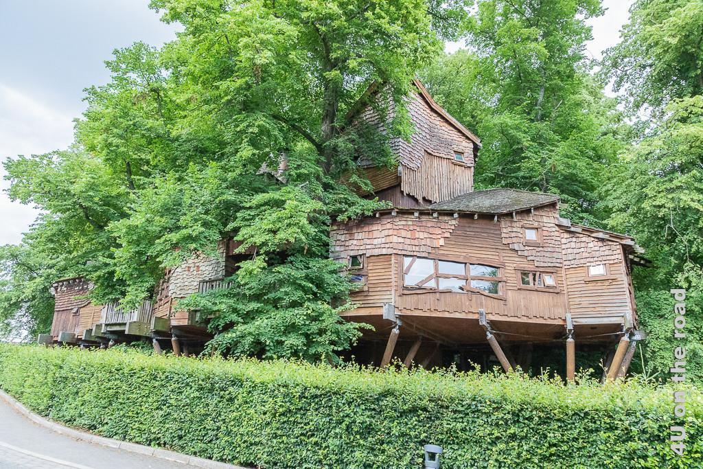 Alnwick Gardens - Baumhaus von der Stirnseite aus gesehen