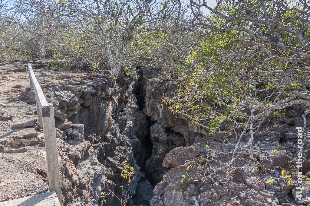 Gerissener Boden auf der Insel Genovesa, wenn man die Prinz Philip Stufen erklommen hat - Galápagos Inseln