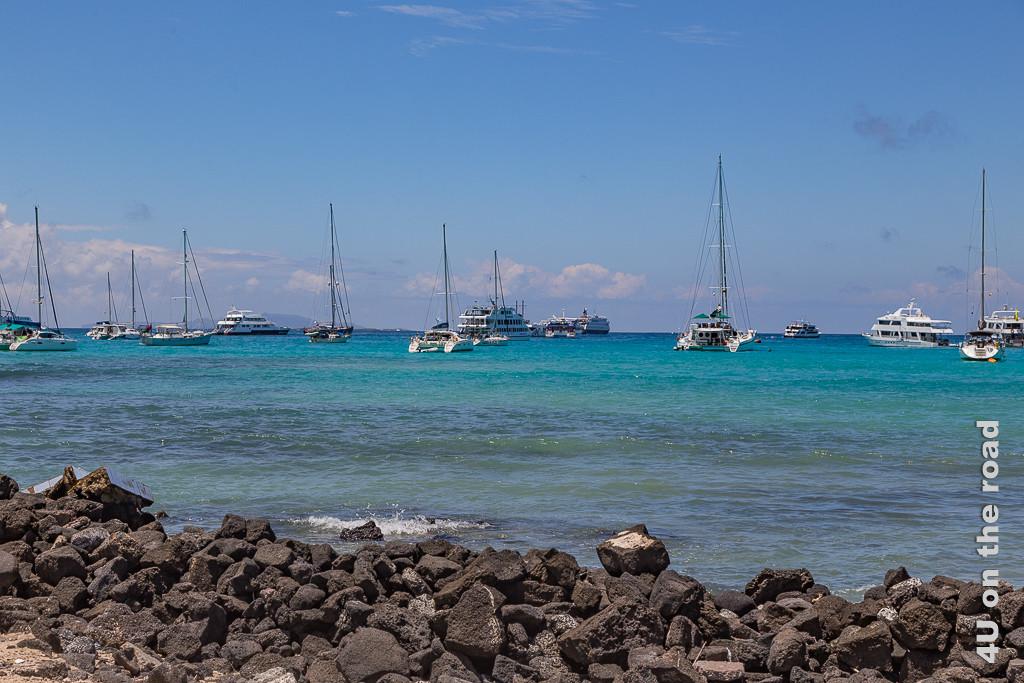 Kreuzfahrtschiffe vor Santa Cruz vor Anker - Illustration Kreuzfahrt Galápagos