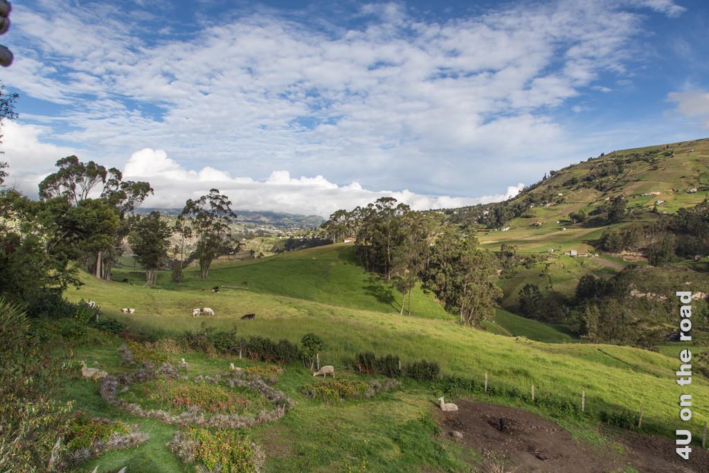 Ausblick von der Posada Ingapirca