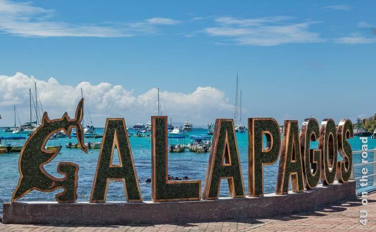 Featurebild Reisebericht Galápagos Kreuzfahrt