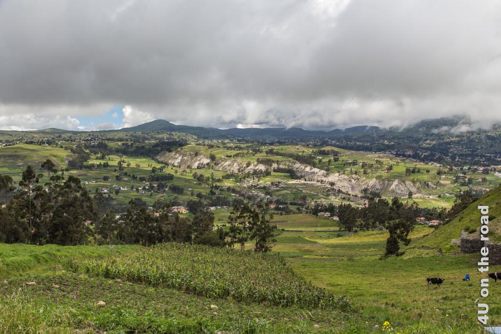 Wir verlassen Ingapirca und werfen einen letzten Blick auf das liebliche Andenhochland.