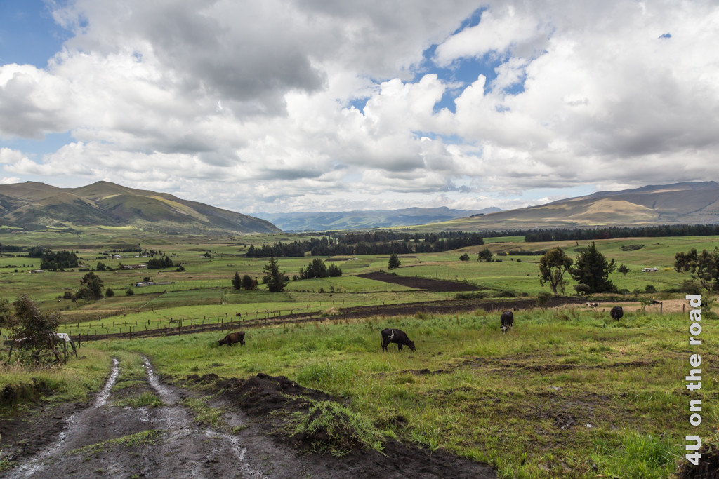 Die Strasse wird auch nach dem Ausgang aus dem Cotopaxi Nationalpark nicht wirklich besser