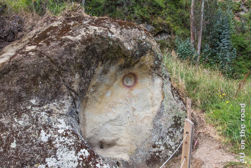 Fels mit Auge (event. Pumadarstellung)