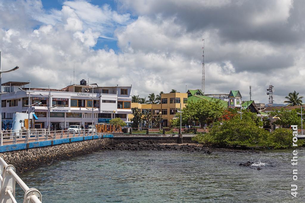 Santa Cruz vom Anleger aus gesehen - Reisebericht Galápagos Kreuzfahrt