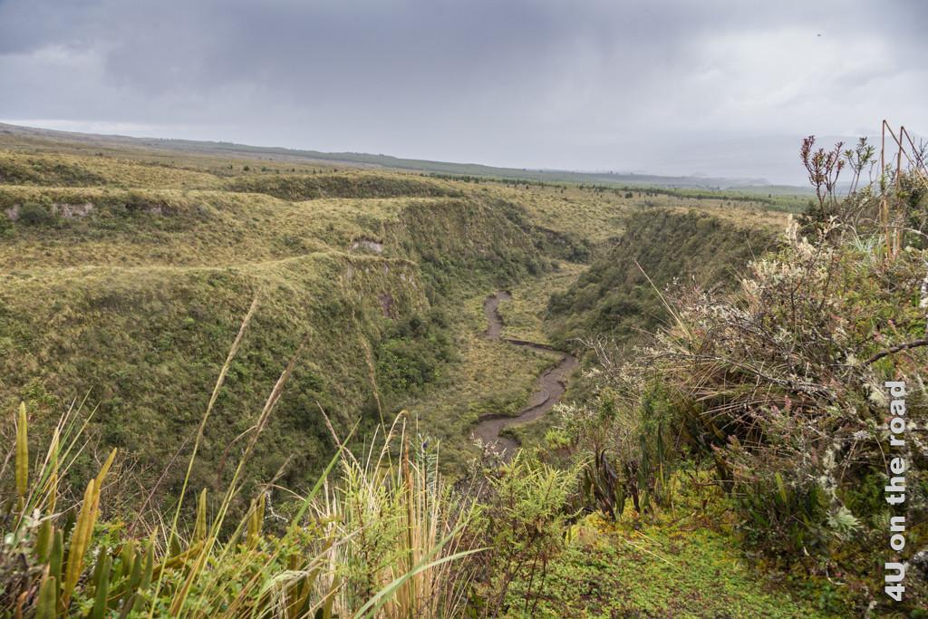 Schlucht beim Visitor Center im Cotopaxi Nationalpark