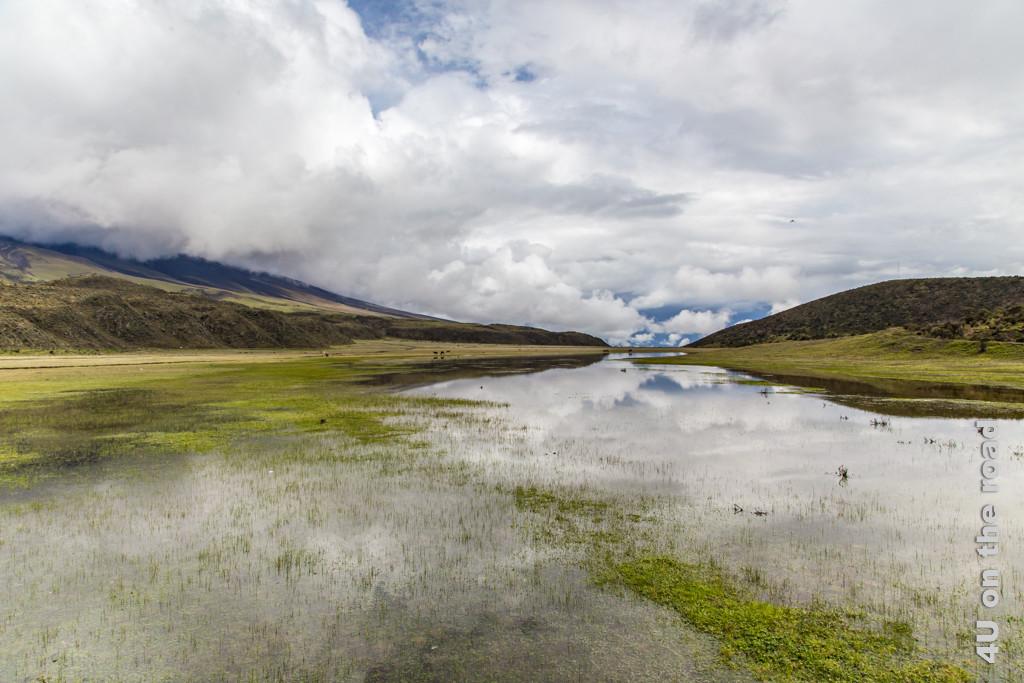 Spiegelung im Hochtal bei der Laguna Limpiopungo im Cotopaxi Nationalpark