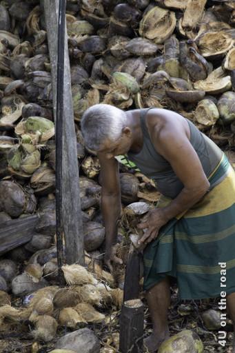 Das Schälen der LKW-Ladung Kokosnüsse ist harte Arbeit