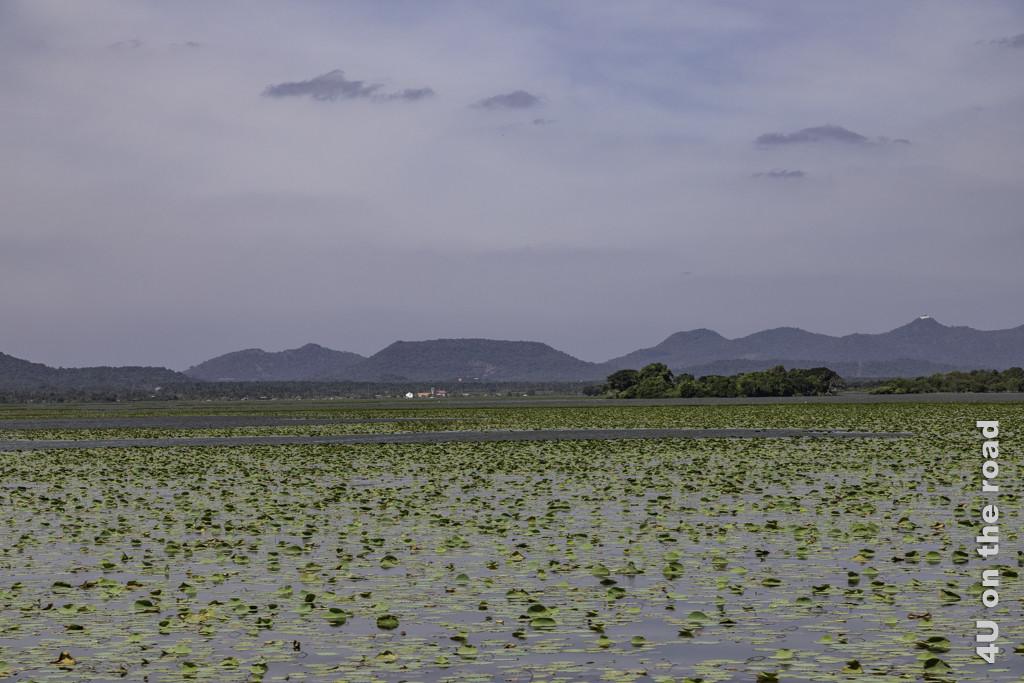 Auf dem Weg zum Yala Nationalpark