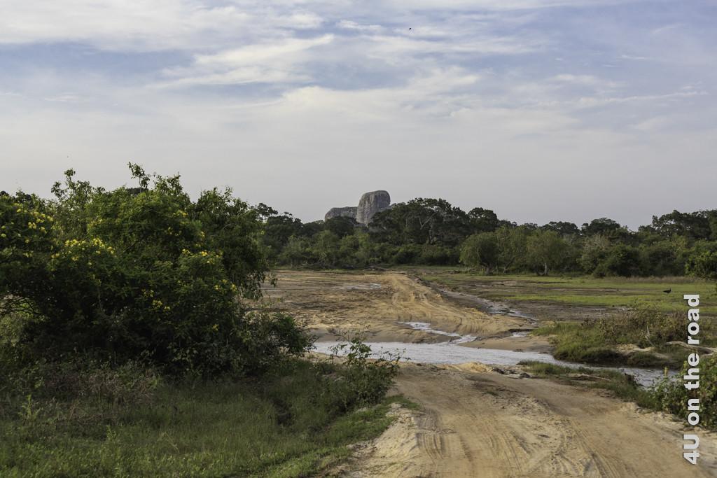 Wir suchen den Leoparden auch zwischen den Felsen im Yala Nationalpark