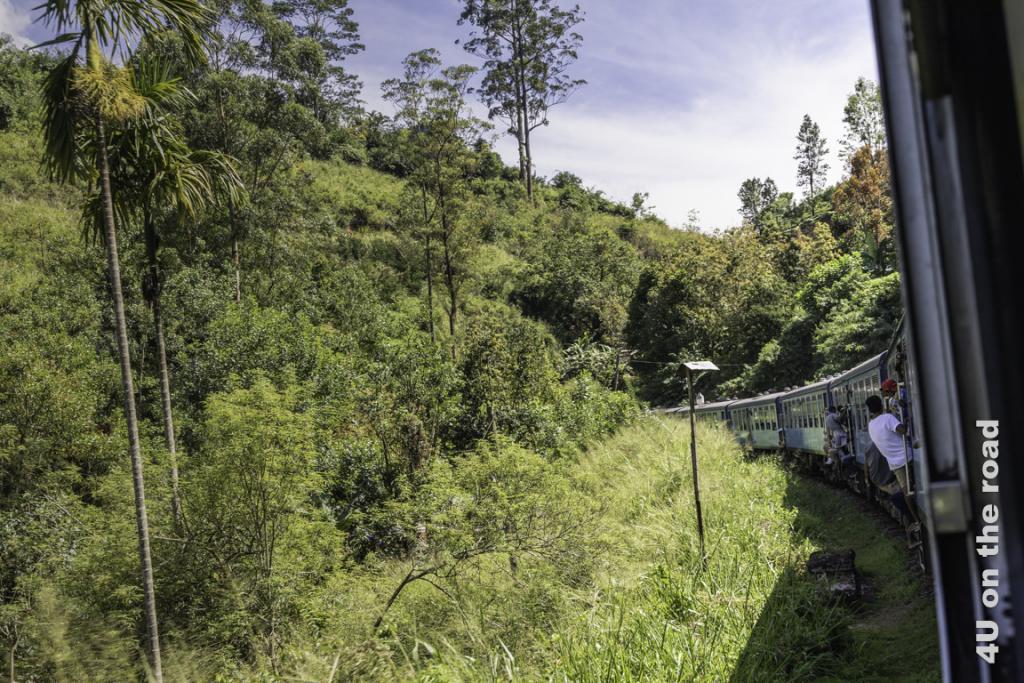 Bei Tunneldurchfahrten kreischen alle Passagiere in den vorderen Wagons - Zugfahrt von Kandy nach Nuwara Eliya