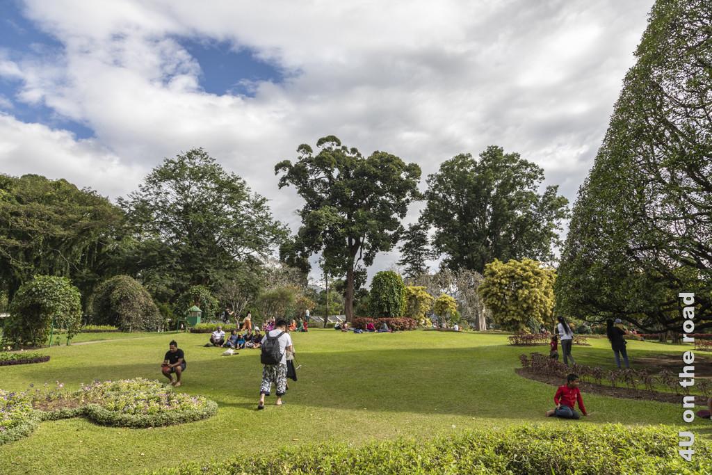 Botanischer Garten Peradeniya