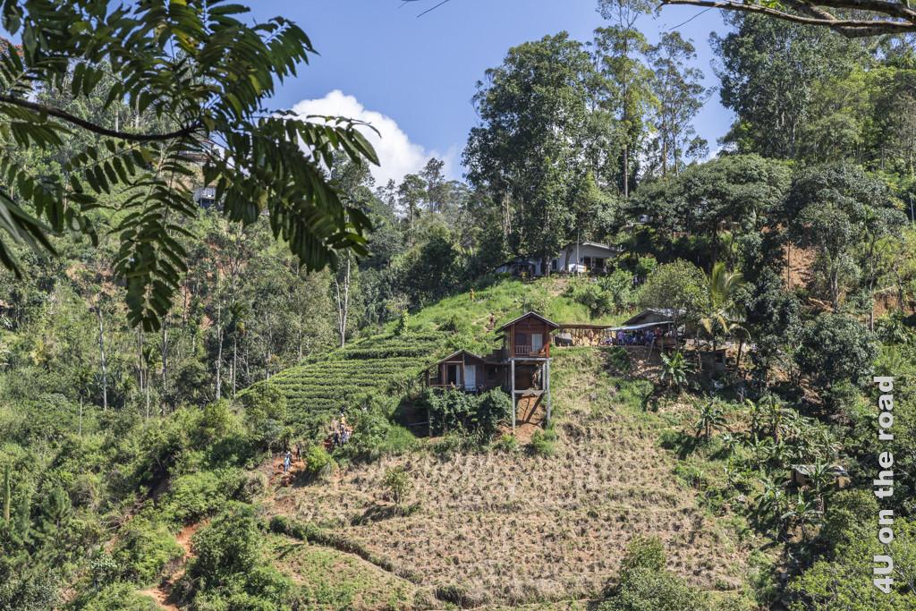 Entlang des Ella Gaps sind viele Häuser auf dünnen Betonpfeilern zum Hang hin erbaut. Das wirkt nicht so stabil.