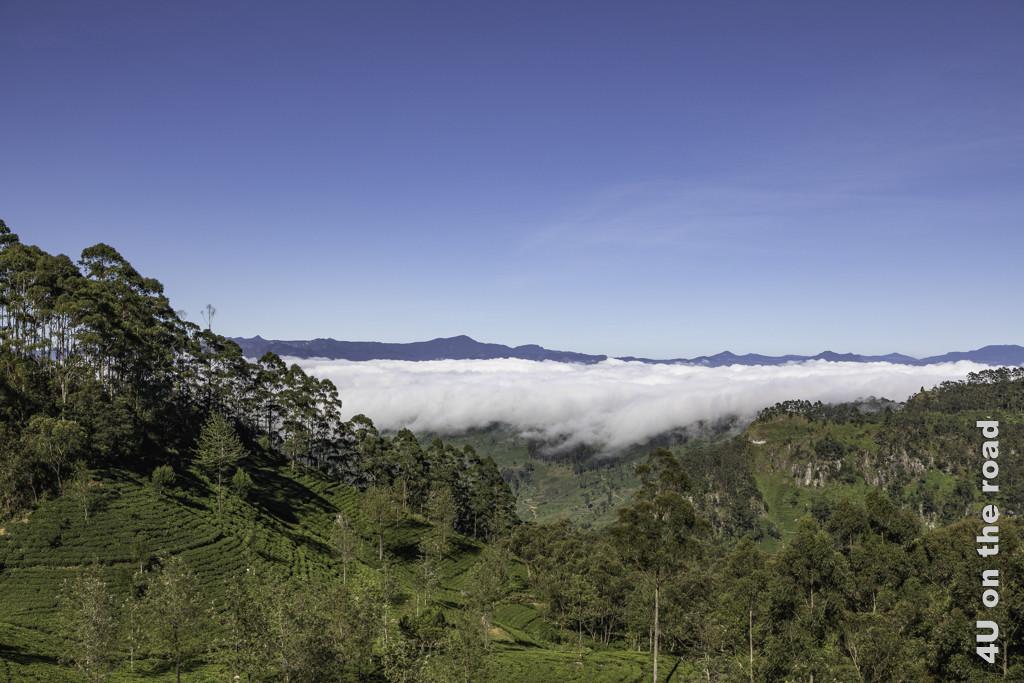 Als wir uns auf den Weg nach unten begeben, kommen die Wolken über den Berg gekrochen.