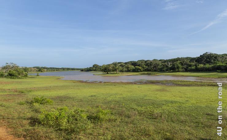 Feature Yala Nationalpark