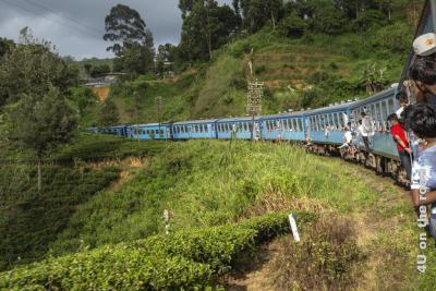 Feature Mit dem Zug von Nuwara Eliya nach Ella