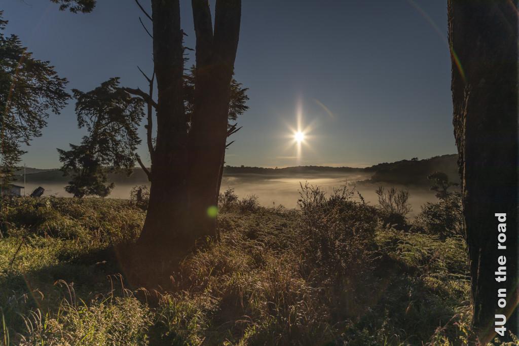 Zauberhafte Landschaft im Spiel von Sonne und Nebel
