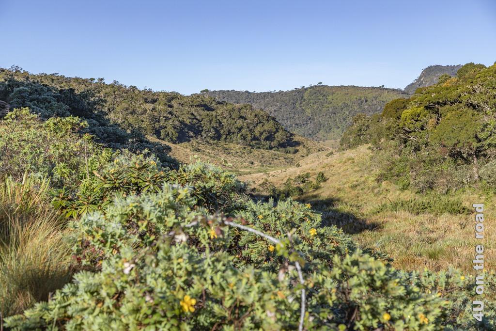 Vom Little World's End zu World's End führt der Weg entlang dieses Hochtals - Horton Plains Nationalpark