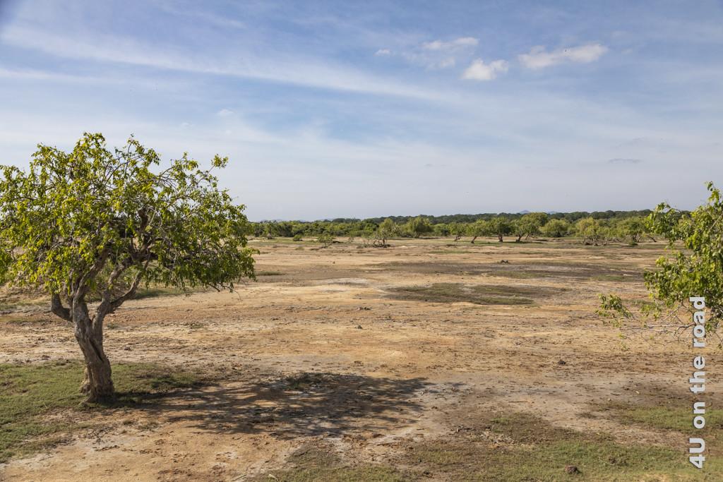 Abwechslungsreiche Landschaft vor dem Eingang zum Yala Nationalpark
