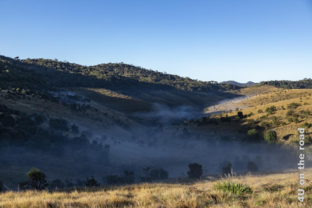 Licht, Schatten und Nebel schaffen eine mystische Stimmung im Horton Plains Nationalpark