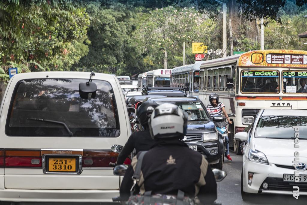 Chaotischer Verkehr auf dem Weg zum Botanischen Garten