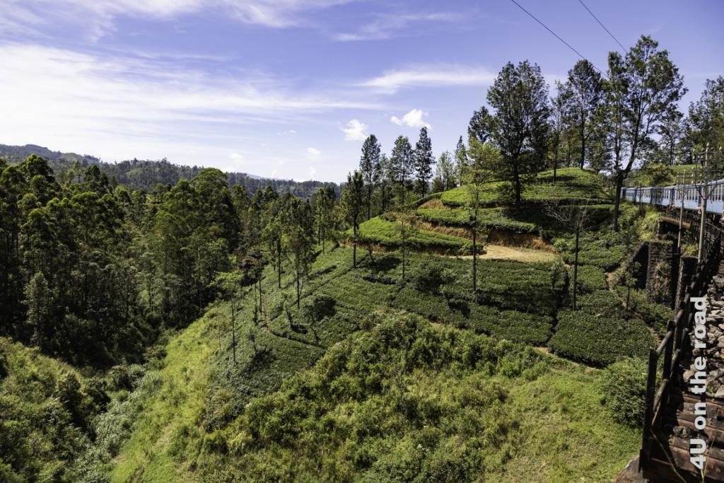 Die Zugstrecke von Kandy nach Nuwara Eliya führt oft auf einer Hügelkette entlang