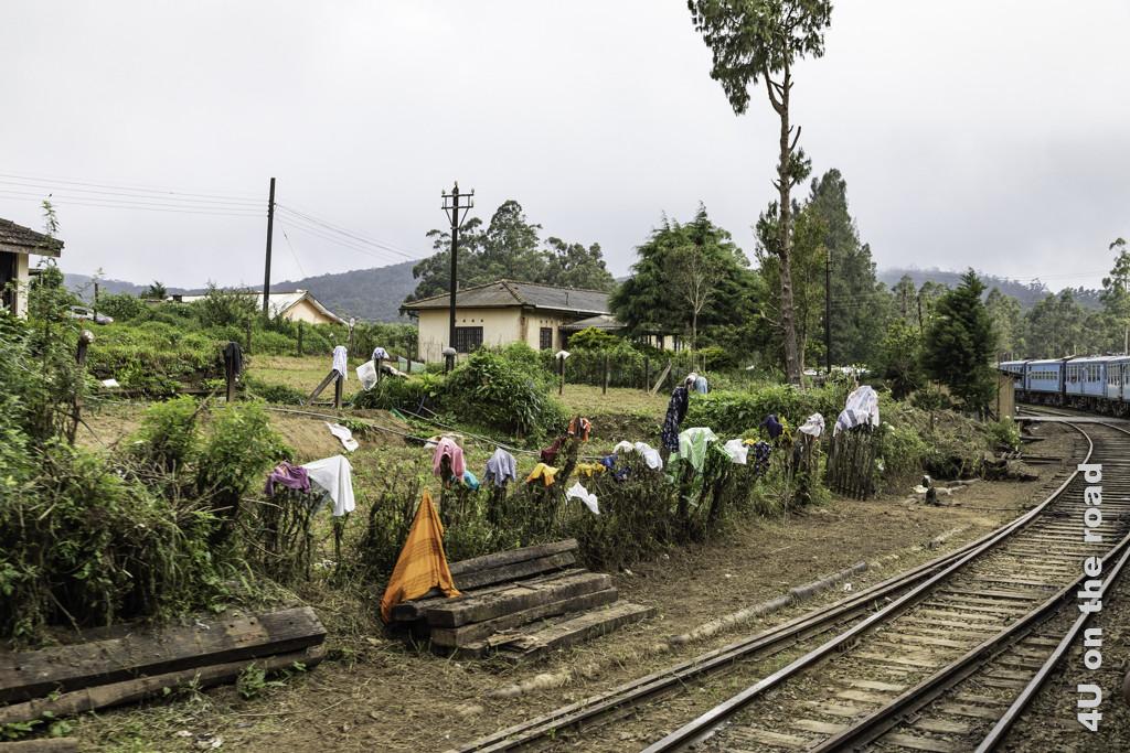 Wäschetrocknen neben den Gleisen an der Zugstrecke von Nuwara Eliya nach Ella
