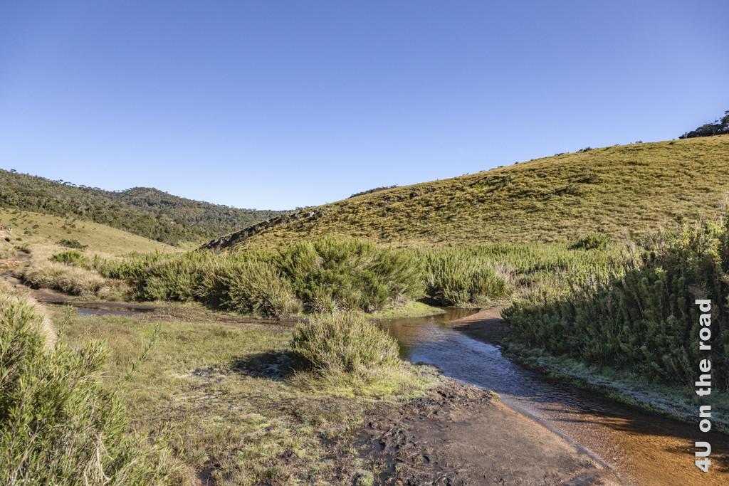 Hügelige Landschaft auf dem Weg von World's End zu den Baker's Falls - Horton Plains Nationalpark