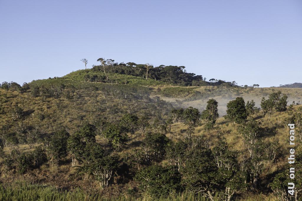 Letzte Wolkenfetzen hängen noch in den Senken - Horton Plains Nationalpark