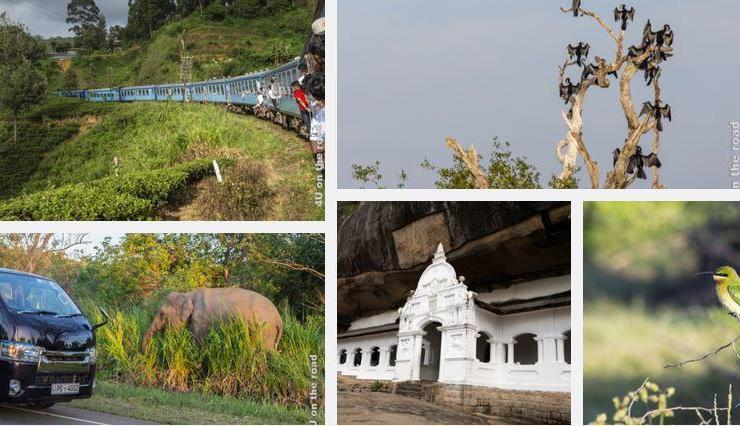 Feature Galerie Sri Lanka