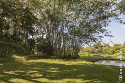 Licht und Schatten, Bambus und kleine Reisfelder im Hintergrund, eine Treppe, die nur scheinbar ins Nichts führt - Lunganga