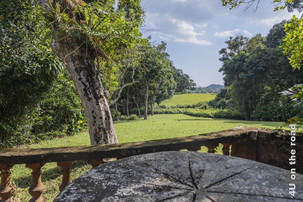 Blick vom Tisch auf der Veranda auf Cinnamon Hill. Die tiefergelegte Strasse ist perfekt durch die niedrigen Sträucher verborgen. - Lunuganga