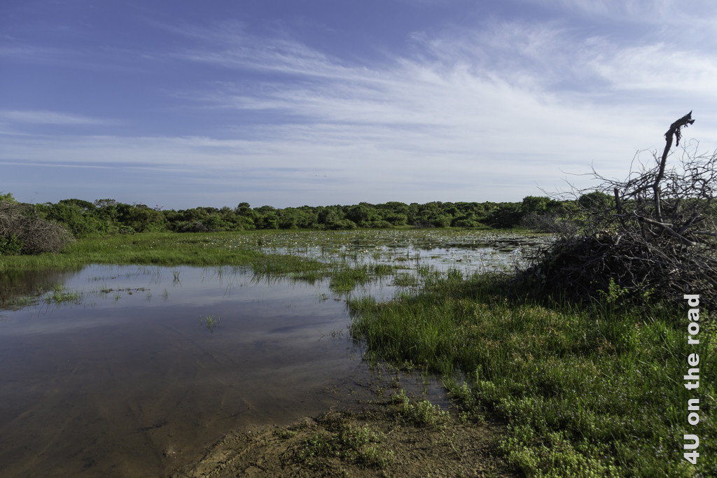 Lagune im Bundala Nationalpark