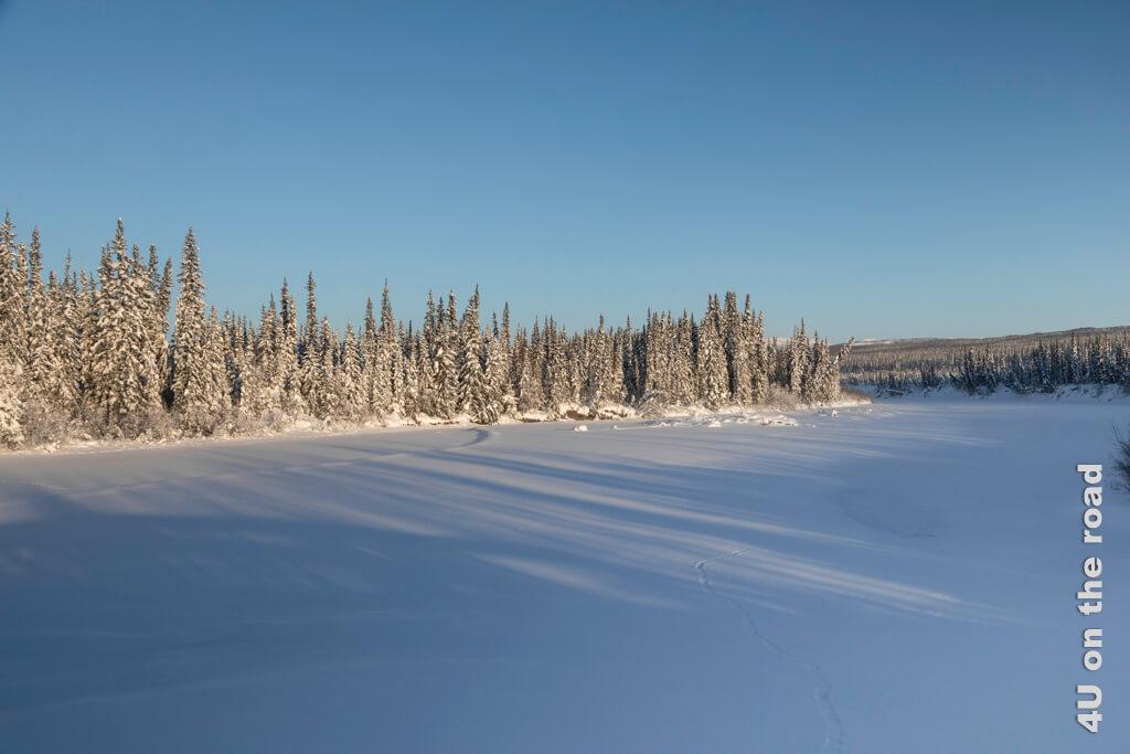 Die andere Seite des Yukons liegt schon etwas in der Sonne.