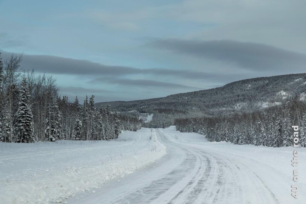 Einsamkeit und Wald - Yukon im Winter